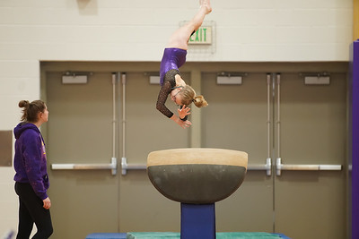 Gymnastics vs Wayne SS 20200122-0012