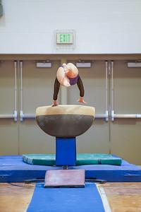 Gymnastics vs Wayne SS 20200122-0034