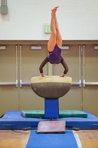 Gymnastics vs Wayne SS 20200122-0025