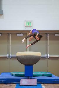 Gymnastics vs Wayne SS 20200122-0039