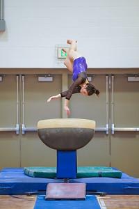 Gymnastics vs Wayne SS 20200122-0038