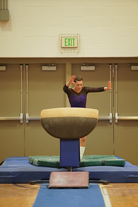 Gymnastics vs Wayne SS 20200122-0006