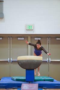 Gymnastics vs Wayne SS 20200122-0041