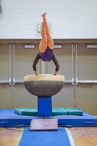 Gymnastics vs Wayne SS 20200122-0035
