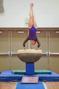 Gymnastics vs Wayne SS 20200122-0026