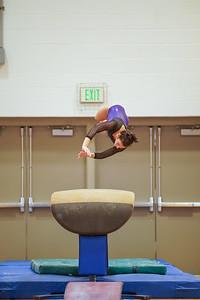 Gymnastics vs Wayne SS 20200122-0029