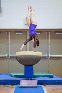 Gymnastics vs Wayne SS 20200122-0037