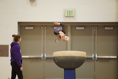 Gymnastics vs Wayne SS 20200122-0014