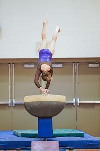 Gymnastics vs Wayne SS 20200122-0059