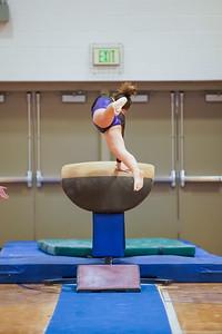 Gymnastics vs Wayne SS 20200122-0054