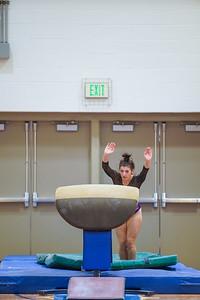 Gymnastics vs Wayne SS 20200122-0042