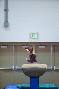 Gymnastics vs Wayne SS 20200122-0050