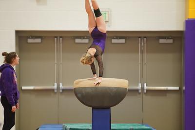 Gymnastics vs Wayne SS 20200122-0010