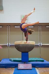Gymnastics vs Wayne SS 20200122-0056