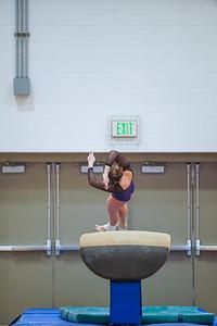 Gymnastics vs Wayne SS 20200122-0049