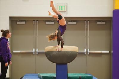 Gymnastics vs Wayne SS 20200122-0009