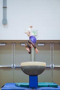 Gymnastics vs Wayne SS 20200122-0047