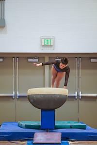 Gymnastics vs Wayne SS 20200122-0040