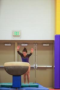 Gymnastics vs Wayne SS 20200122-0032