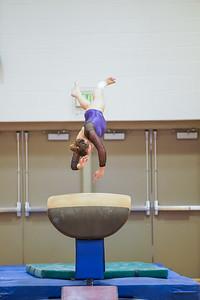 Gymnastics vs Wayne SS 20200122-0060