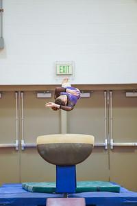 Gymnastics vs Wayne SS 20200122-0061