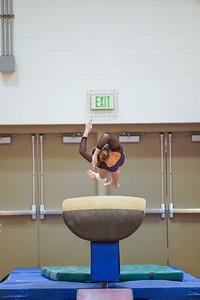 Gymnastics vs Wayne SS 20200122-0062