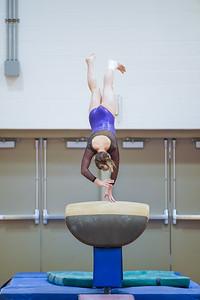 Gymnastics vs Wayne SS 20200122-0046