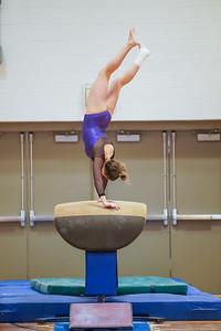 Gymnastics vs Wayne SS 20200122-0058
