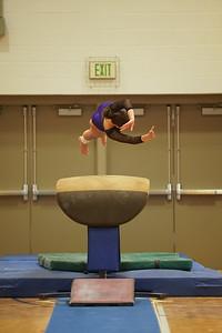 Gymnastics vs Wayne SS 20200122-0005