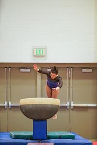 Gymnastics vs Wayne SS 20200122-0031