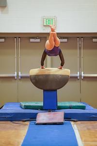 Gymnastics vs Wayne SS 20200122-0024
