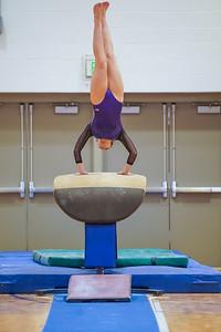 Gymnastics vs Wayne SS 20200122-0036
