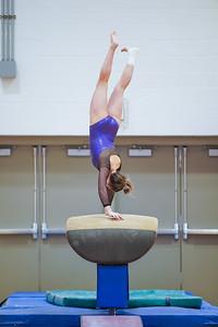 Gymnastics vs Wayne SS 20200122-0045