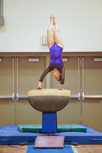 Gymnastics vs Wayne SS 20200122-0027