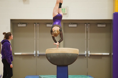 Gymnastics vs Wayne SS 20200122-0011