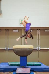 Gymnastics vs Wayne SS 20200122-0028