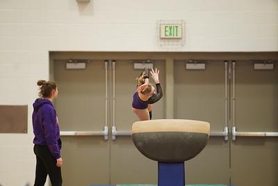 Gymnastics vs Wayne SS 20200122-0015