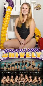 Swim Banner Brooklynn Shively