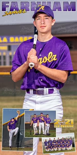 Baseball Banner Samuel Farnham