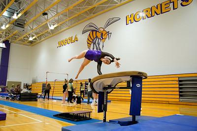 Gymnastics vs Wawasee 20210123-0106