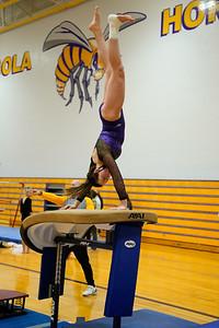 Gymnastics vs Wawasee 20210123-0133