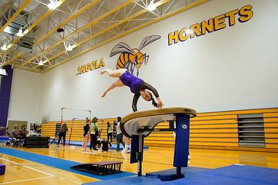Gymnastics vs Wawasee 20210123-0107