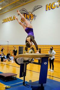 Gymnastics vs Wawasee 20210123-0161