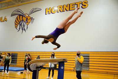 Gymnastics vs Wawasee 20210123-0193