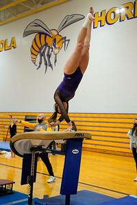 Gymnastics vs Wawasee 20210123-0134