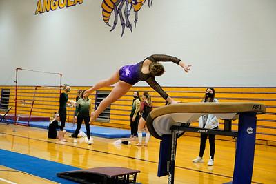 Gymnastics vs Wawasee 20210123-0184
