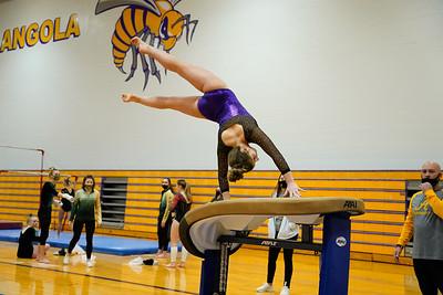 Gymnastics vs Wawasee 20210123-0187