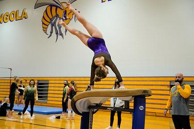 Gymnastics vs Wawasee 20210123-0188