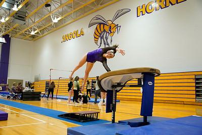 Gymnastics vs Wawasee 20210123-0105