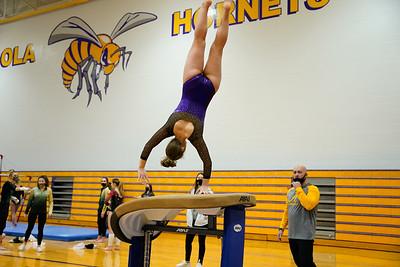 Gymnastics vs Wawasee 20210123-0191